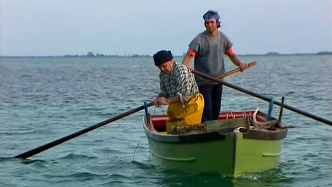 Pescauri