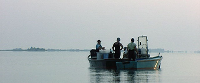 pescauri01